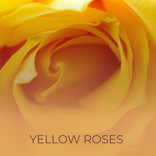Yellow Roses by Hank Snow