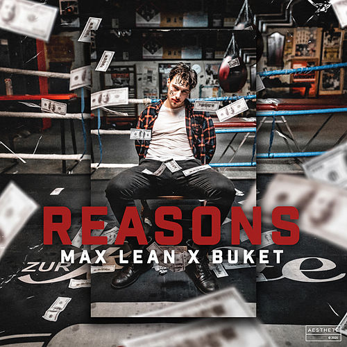 Reasons by Max Lean