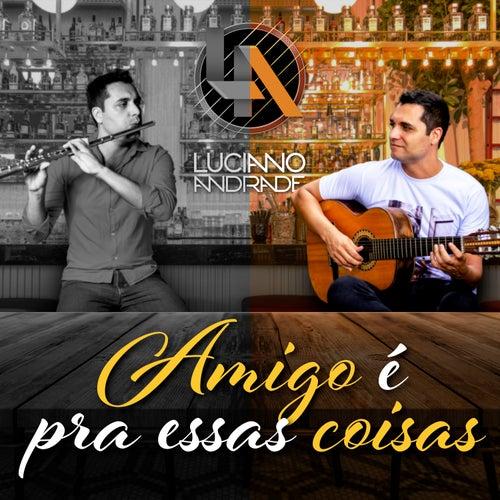 Amigo É pra Essas Coisas by Luciano Andrade