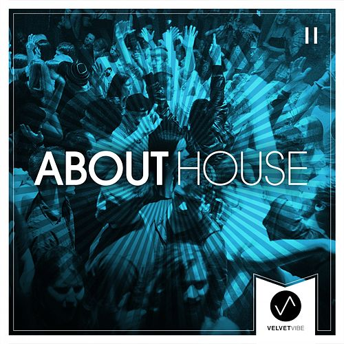About House, Vol. 2 by Various Artists