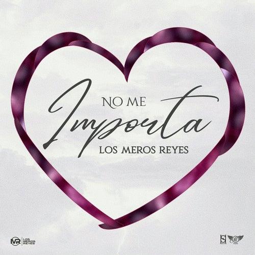 No Me Importa by Los Meros Reyes