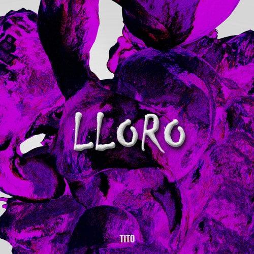 Lloro by Tito