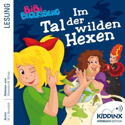 Hörbuch: Im Tal der wilden Hexen (Ungekürzt) von Bibi Blocksberg