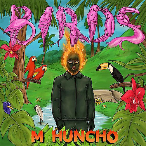 Birds de M Huncho