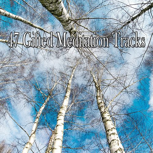 47 Gifted Meditation Tracks von S.P.A