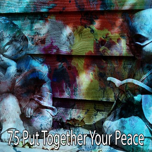 75 Put Together Your Peace de White Noise Research (1)