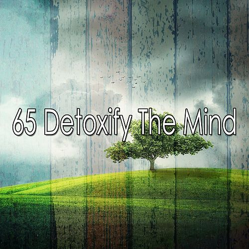 65 Detoxify the Mind by Yoga Music