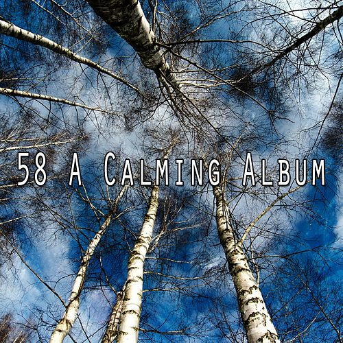 58 A Calming Album by Trouble Sleeping Music Universe