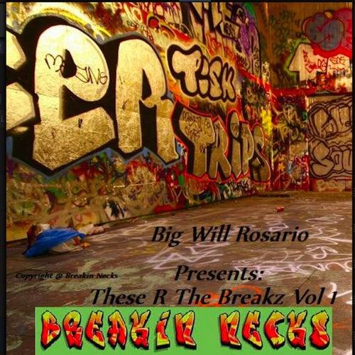 Da Return (Back In The Day Remix) de Big Will Rosario