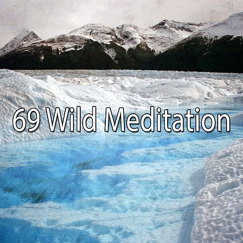 69 Wild Meditation by Deep Sleep Meditation
