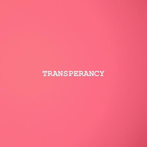 Transperancy by Big Sim