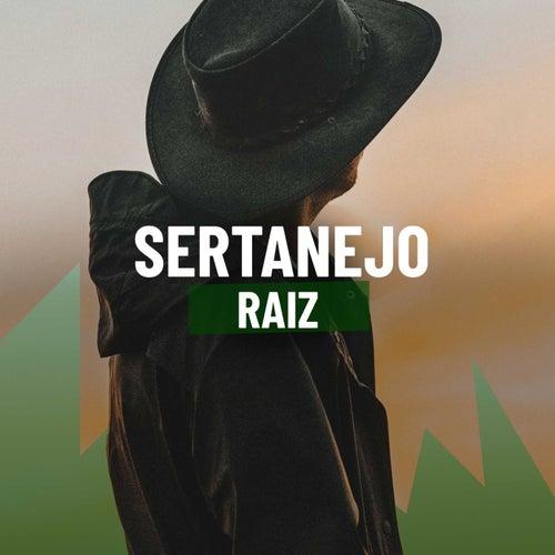 Sertanejo Raiz de Various Artists