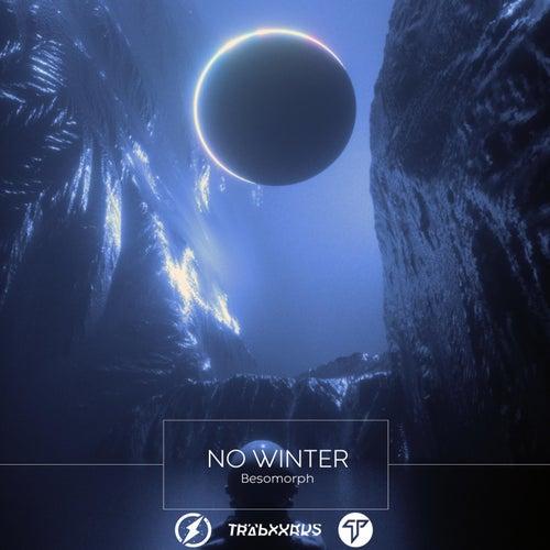 No Winter de Besomorph