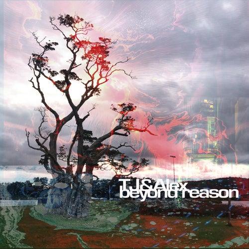 Beyond Reason by TJ