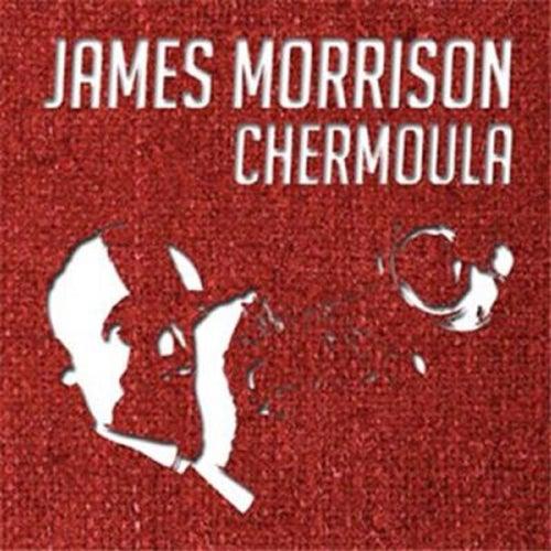 Chermoula by James Morrison