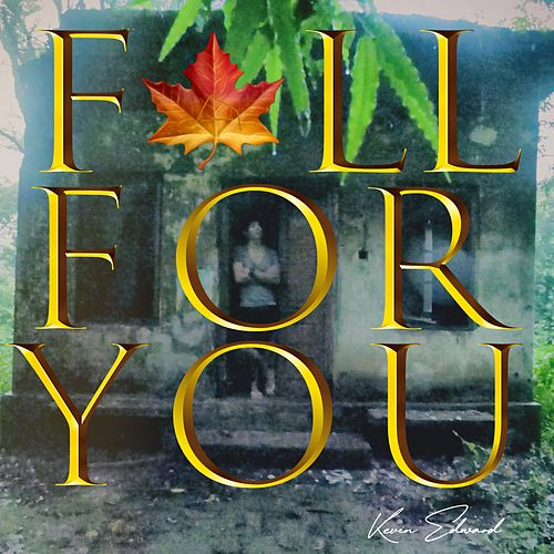 Fall for You by Kevin Edward