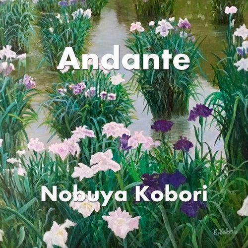 Andante by Nobuya  Kobori