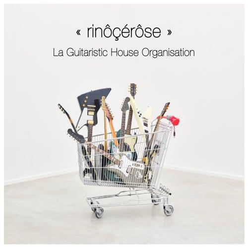 La Guitaristic House Organisation by Rinocerose