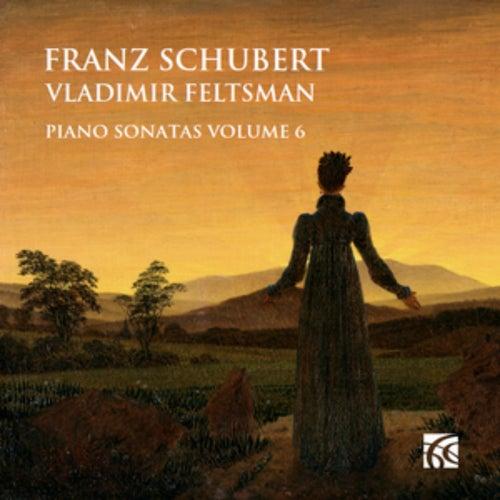 Schubert: Piano Sonatas Vol. 6 de Vladimir Feltsman