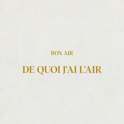 De quoi j'ai l'air by Bon Air