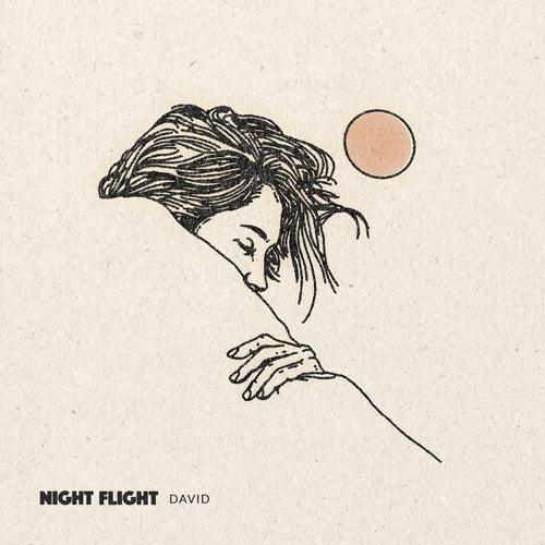 David by NIGHT FLIGHT