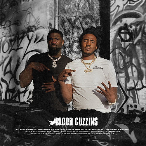 Blood Cuzzins by Mozzy