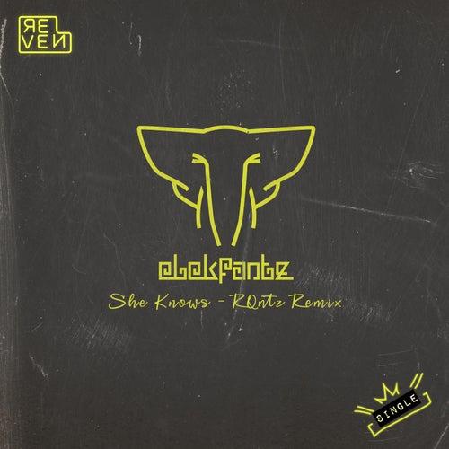 She Knows (RQntz Remix) von Elekfantz