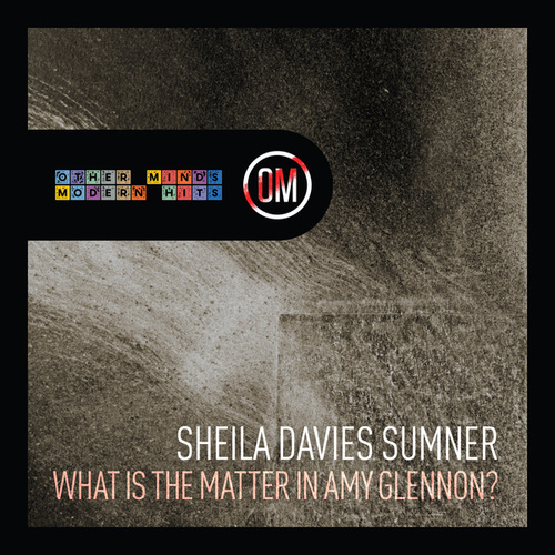 What Is the Matter in Amy Glennon? by Sheila Davies Sumner