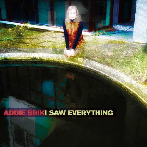 I Saw Everything by Addie Brik