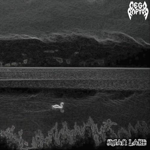 Swan Lake by Megaraptor