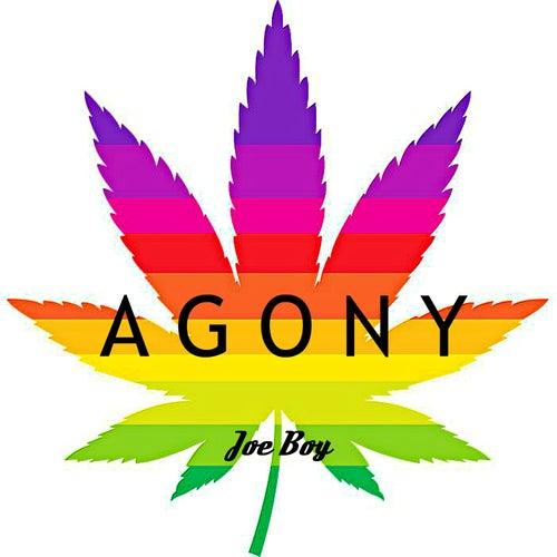 Agony von Joeboy