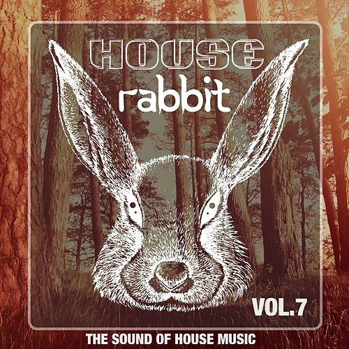 House Rabbit Vol. 7 (The Sound of House Music) von Various Artists
