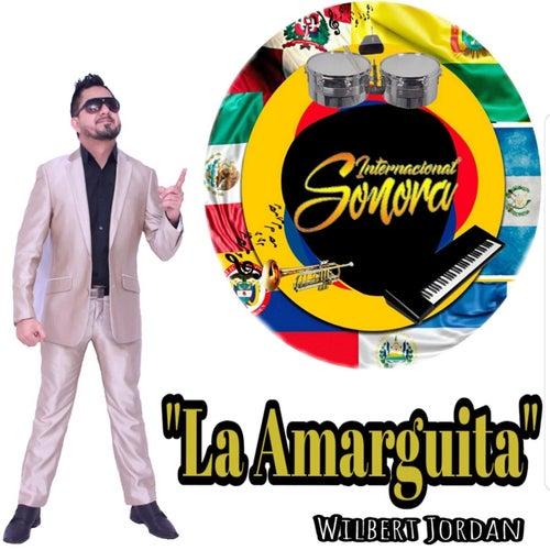 La Amarguita de La Sonora Santanera