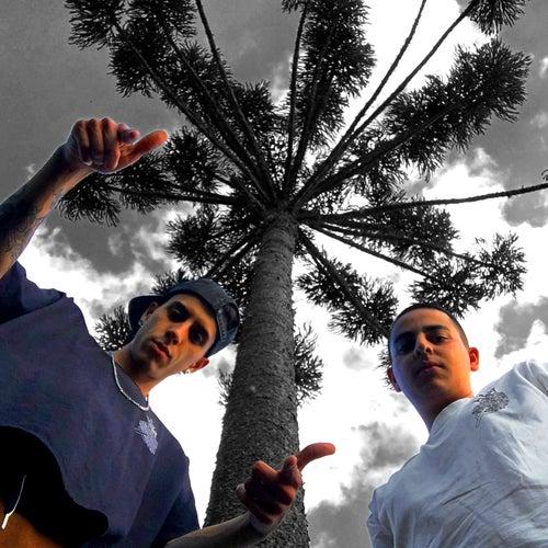 Curitibanos Unidos Revolucionando Ideologias by El Curi