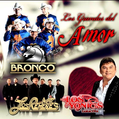 Los Grandes de Amor by Bronco