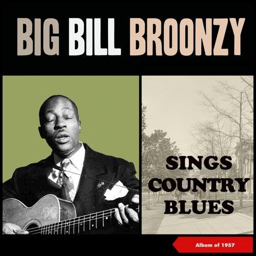 Sings Country Blues (Album of 1957) de Big Bill Broonzy