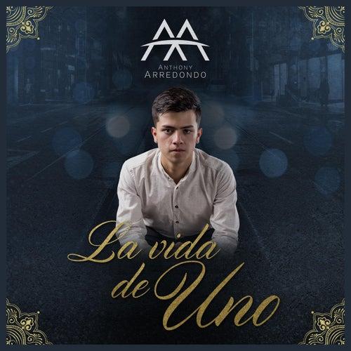 La Vida De Uno by Anthony Arredondo