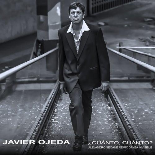 ¿Cuánto, cuánto? (Alejandro Seoane Remix Danza Invisible) by Javier Ojeda