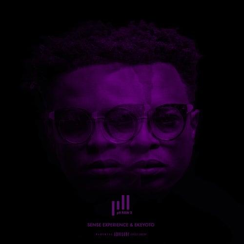 SAKANOWBABY (feat. Una Rams) von pH RawX