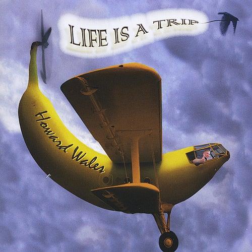 Life Is A Trip de Howard Wales