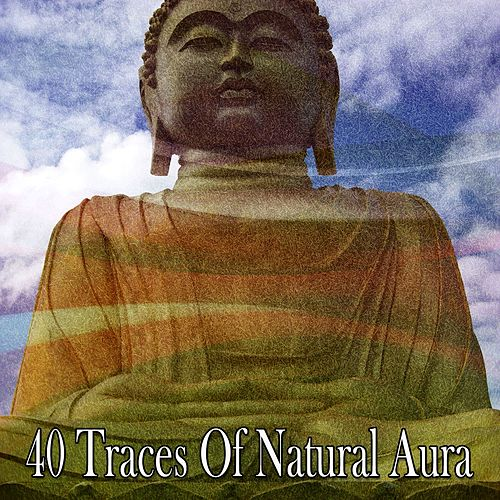 40 Traces of Natural Aura by Music For Reading
