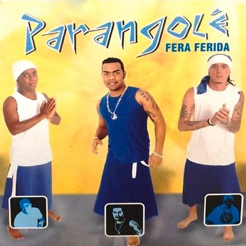 Fera Ferida by Parangolé