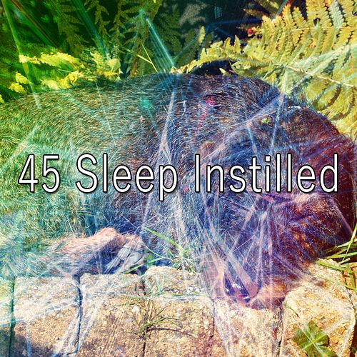 45 Sleep Instilled de Smart Baby Lullaby