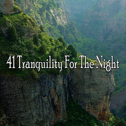 41 Tranquility for the Night by S.P.A