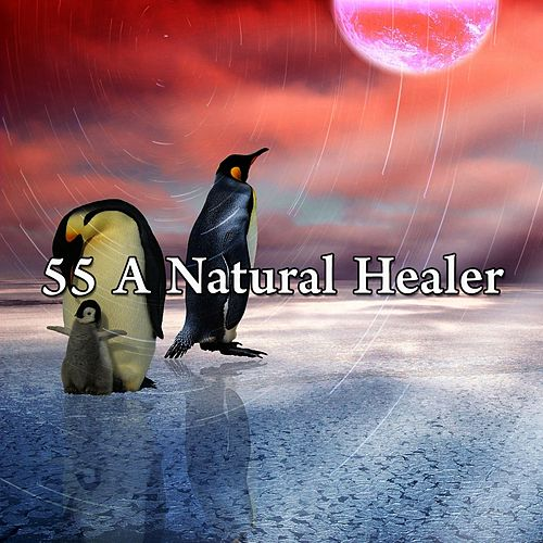 55 A Natural Healer de Ocean Sounds Collection (1)