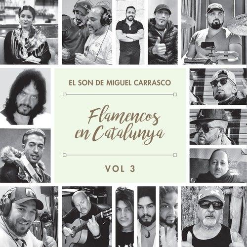 Flamencos en Cataluña 3. El Son de Miguel Carrasco de German Garcia