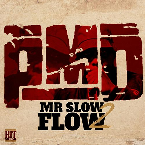 Mr. Slow Flow 2 by PMD