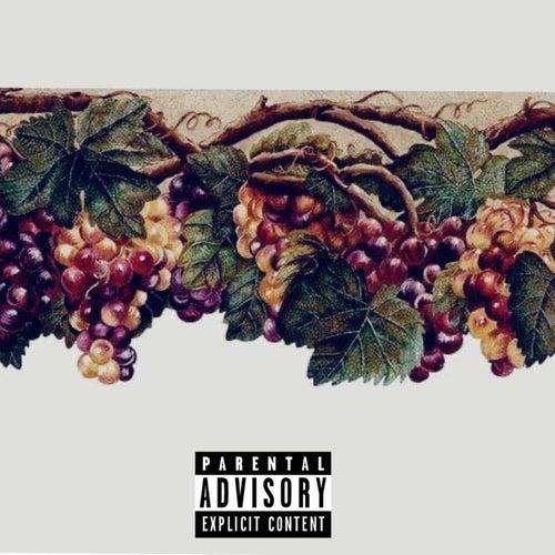 GrapeVine by Yung Tecc