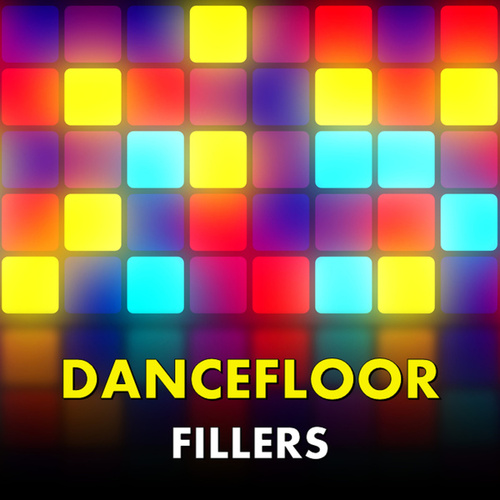Dancefloor Fillers von Various Artists