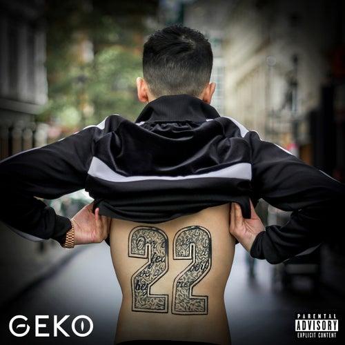 22 by Geko